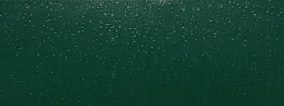 Mechově zelená (1600505)