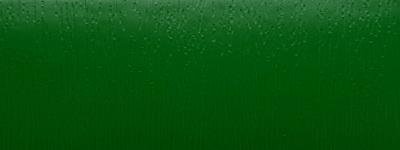 Světle zelená (611005)